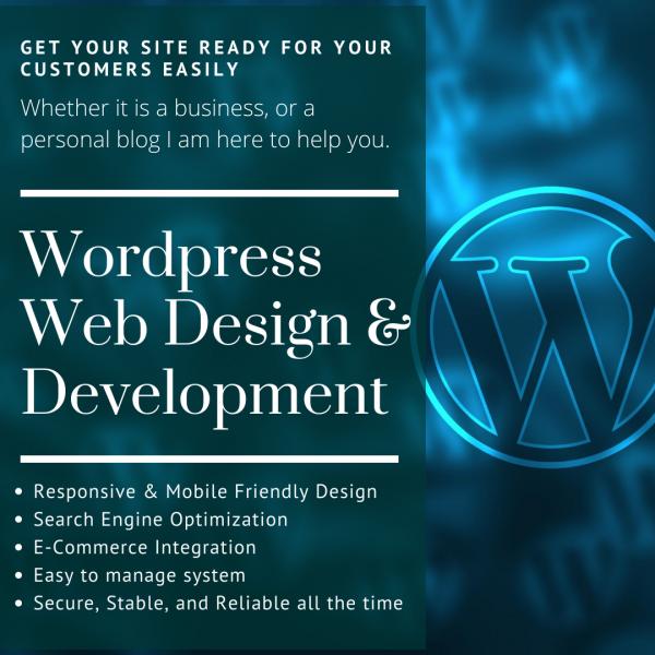 WordPress Web Development and Design by Emre Danisan